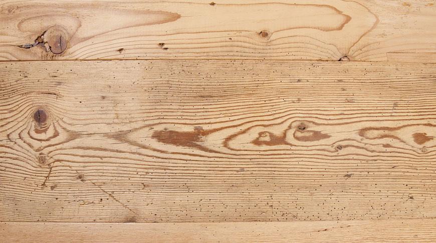 agente-vendita-legno-abete