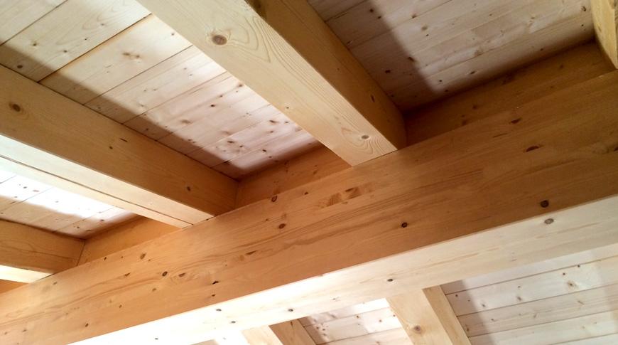 rivenditore-legno-abete-di-ottima-qualità
