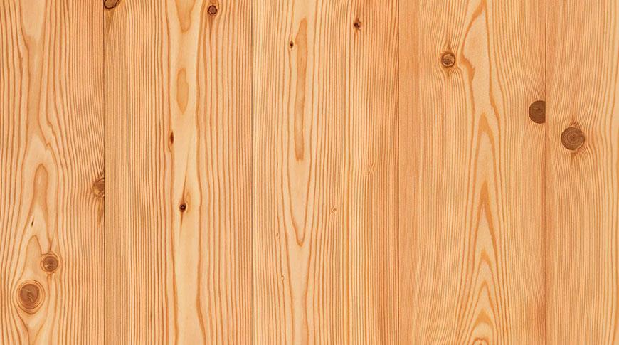 fornitura-legno-larice